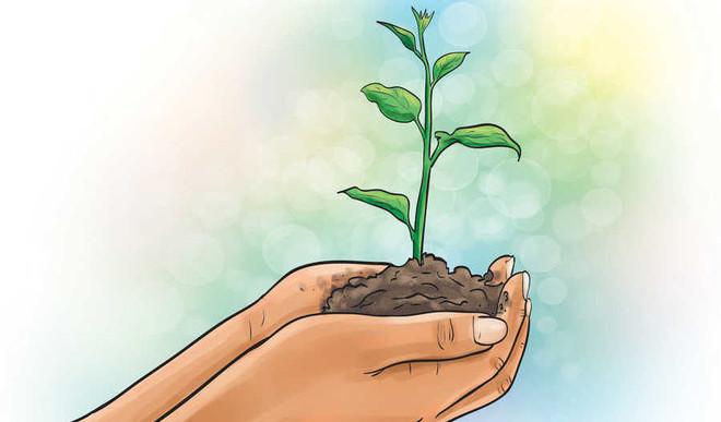 Aditi Sahi: Can We Really Save The Environment?
