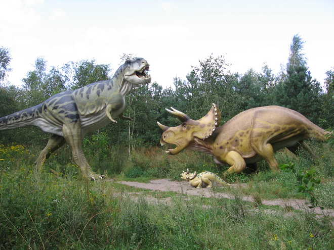 How Do We Know : Dinosaurs