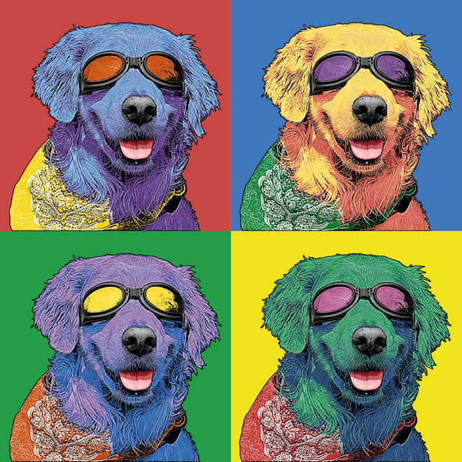 Here's Pet Art For You
