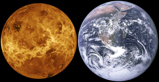 Venus may once have been habitable