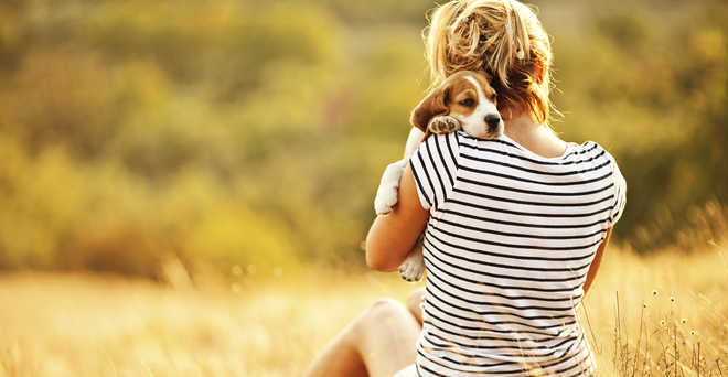 Pet Keeps Doctor Away