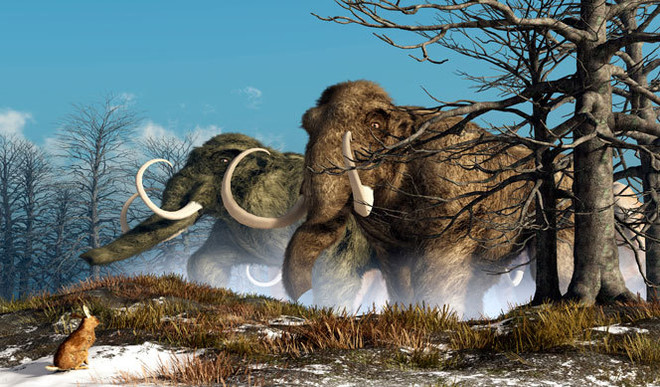 Should We Bring Extinct Animals Back To Life?