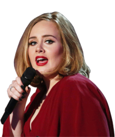 Adele Planning To Get Into Teaching
