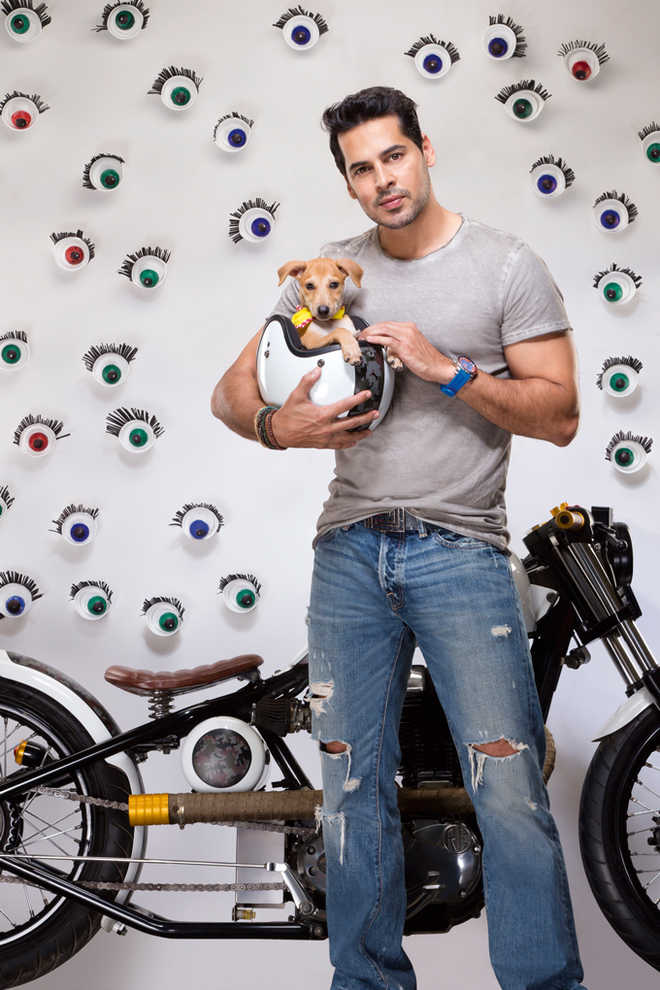 Petting And More With Dino Morea