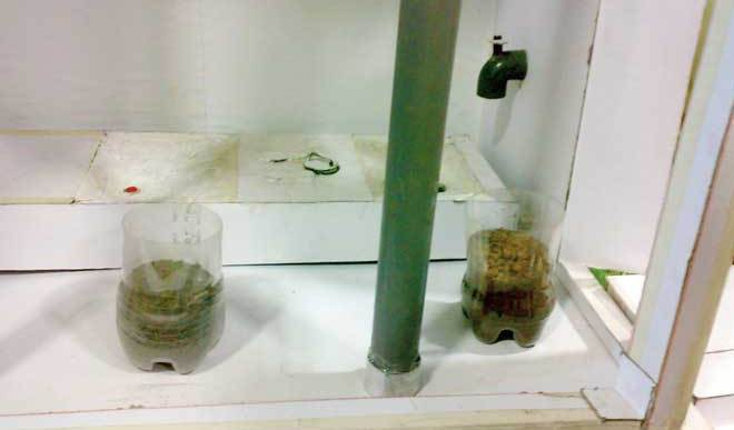 My School Project: Urine Diversion Toilet (UDT)