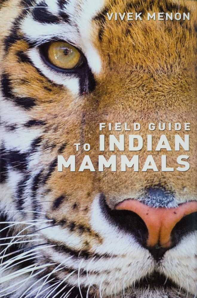 Indian Mammals A Field Guide