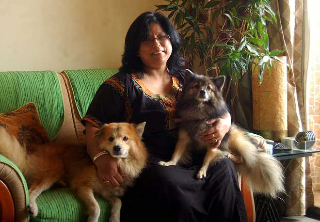 Lost Dog Saves Life