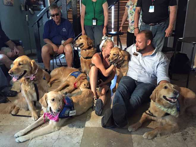 Therapy Dogs Help Orlando Shooting Patients