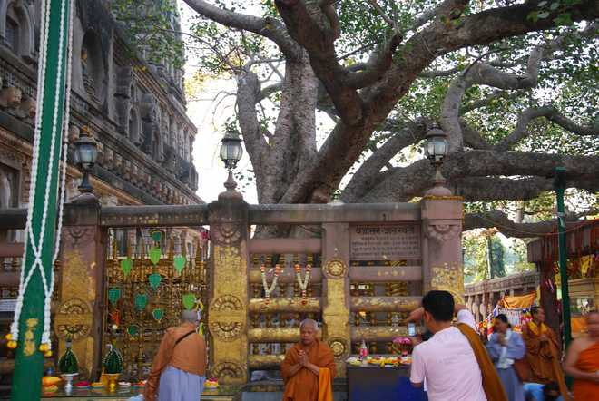 Places To Visit Near Bodh Gaya