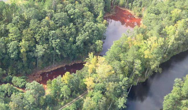 News: How Oil Spills Threaten Environment