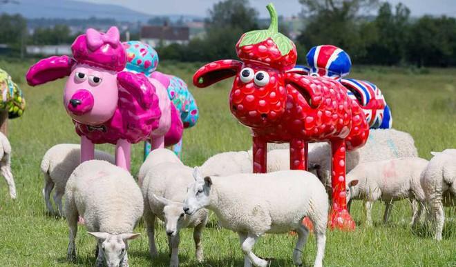 Khushi Sharma: Why Do We Act Like A Flock Of Sheep?