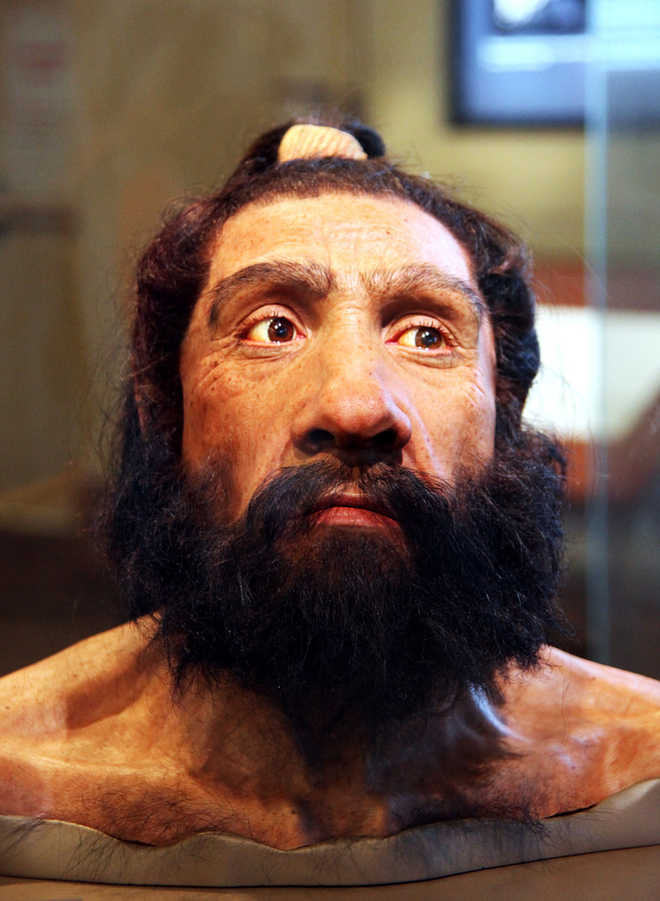 Meet The 'Cool' Neanderthals