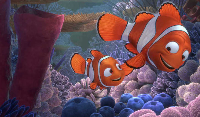 Climate Change: 'Finding Nemo' To Get Harder