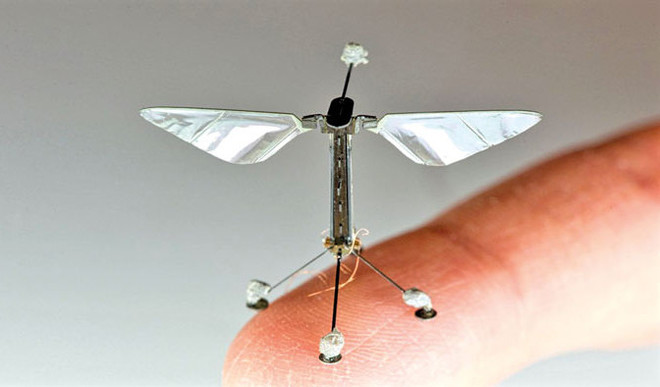 'New hybrid RoboBee can fly, dive and swim'