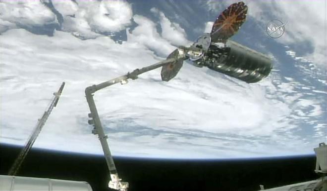 Astronauts Get Ice-cream, Make Pizzas