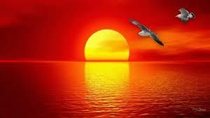 S.Shruthi: The Sun's Beauty