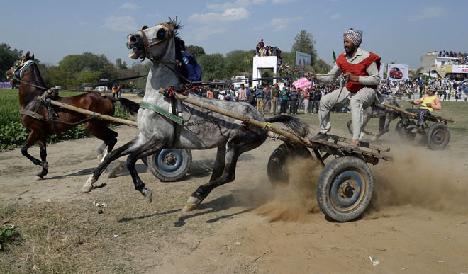 Rural Olympics Took Place In India
