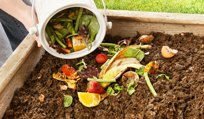 Kitchen Waste That Are Actually Useful
