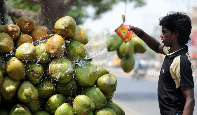 9 Cool Foods For The Sizzling Summers Ahead