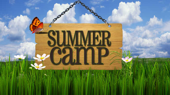 Exciting Summer Camp & Club Ideas. Your Take?