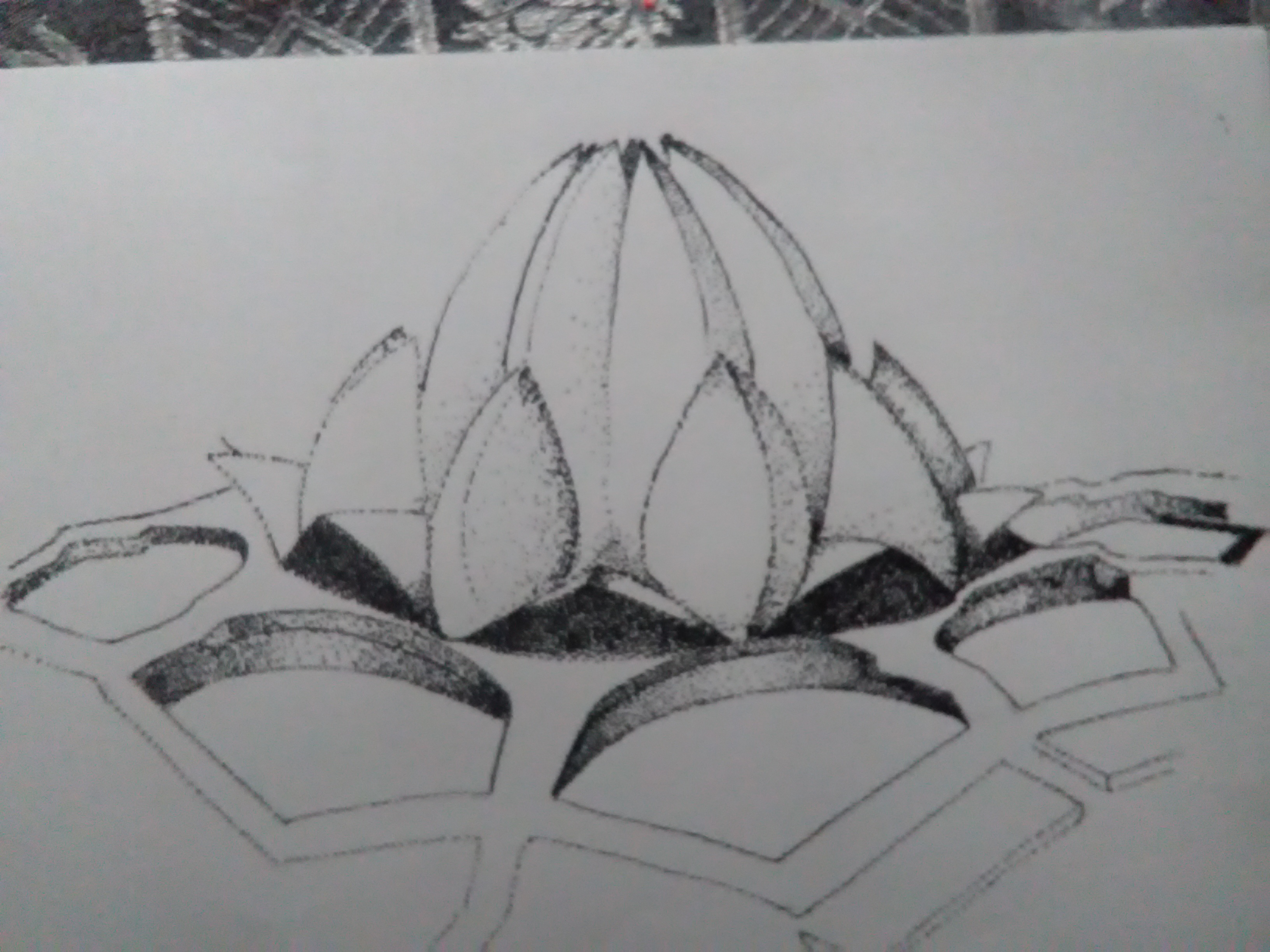 Piyush Sketches The Lotus Temple