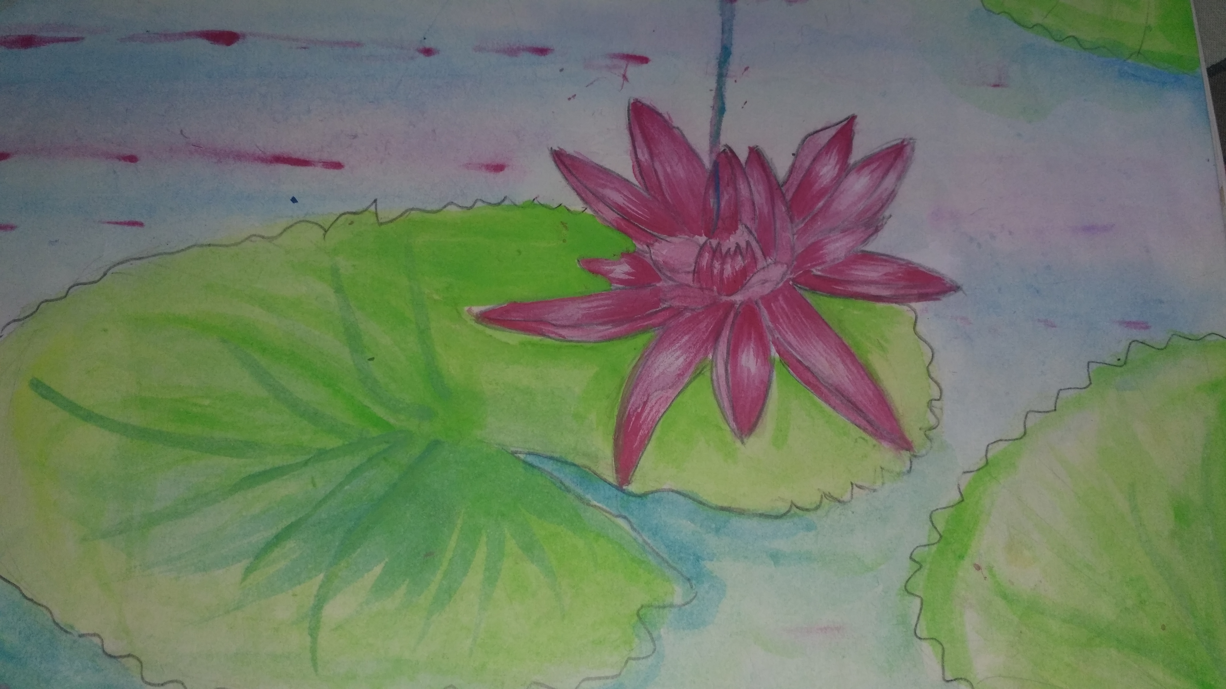 Anuj's Painting of A Lotus