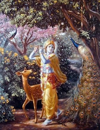 Aadrit On Krishna Consciousness