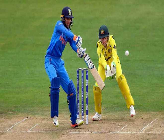India Clash Against Aussies In Semis