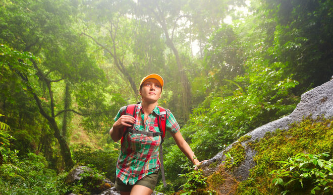 Hiking Boosts Your Brain Power
