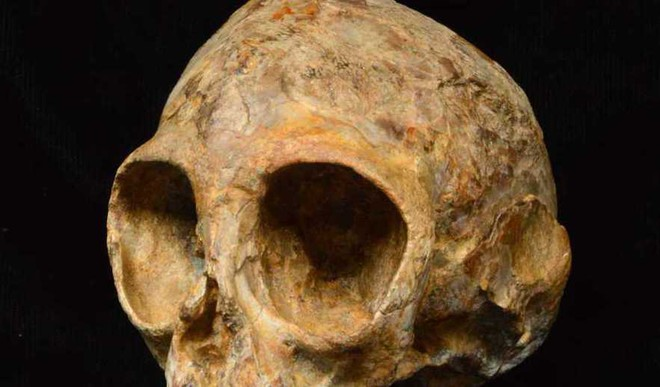The African Origin Theory In Doubt