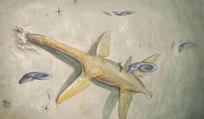 190 Million-Year-Old Sea Monster Identified