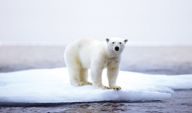Why Climate Change Needs An Image Makeover