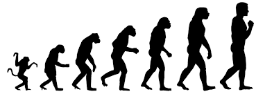 Ujjwal Goel: Why Did Only Humans Evolve?