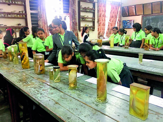 Field trip for Anand Niketan students
