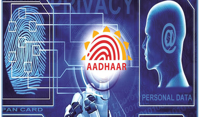 Can Aadhaar Effectively Track The Ill-Begotten Wealth Of Corrupt  People?