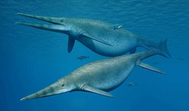 Biggest Ever Ocean Reptile 200M Yrs Old
