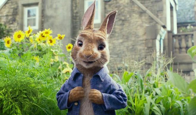 'Peter Rabbit' To Get A Sequel