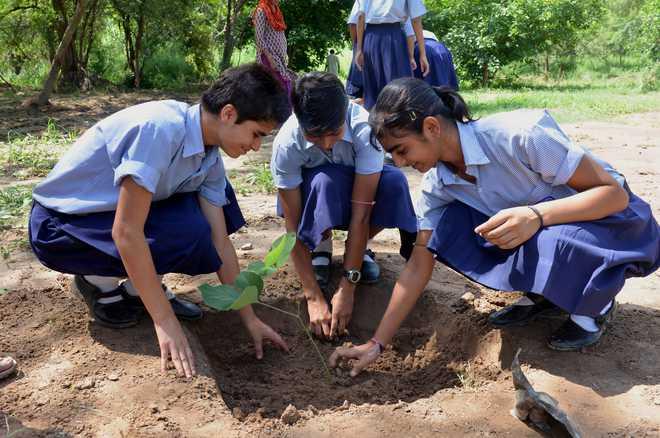Anusha: Can Green Revolution Curb Pollution?