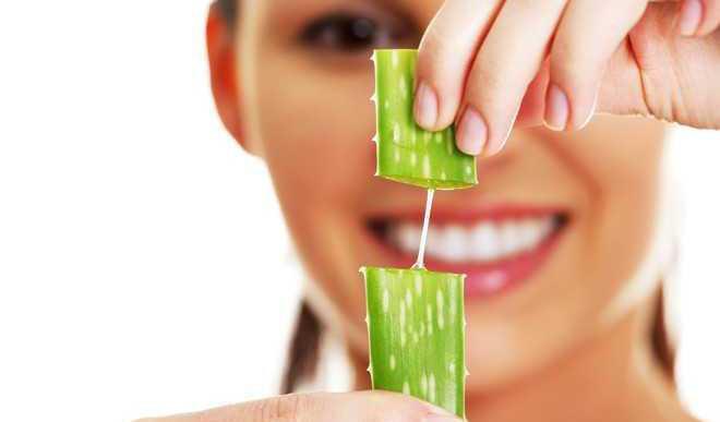 Make Aloe Vera Gel At Home