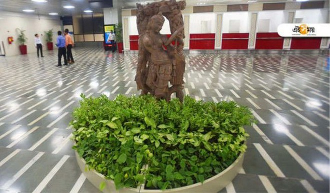 Delhi Airport Opts For 35,000 Plants To Keep Air Clean