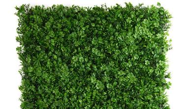 How To Grow Your Own Vertical Garden
