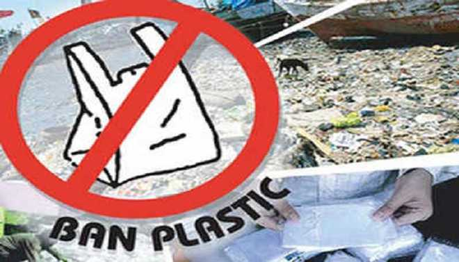 Shruthi: Is Plastic-free Life Feasible?