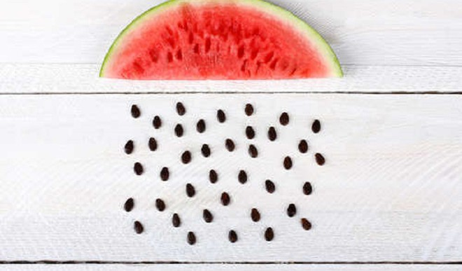 Can You Snack On Watermelon Seeds?