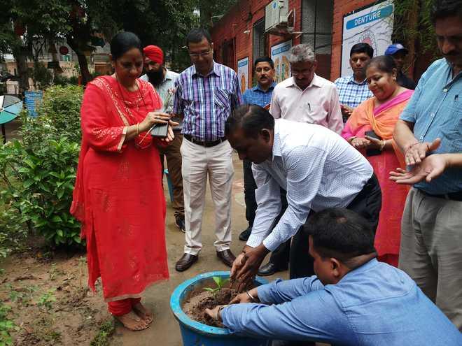 School Celebrates Eco Club Day