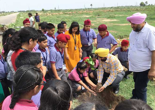 Students Take Part In Plantation Drive