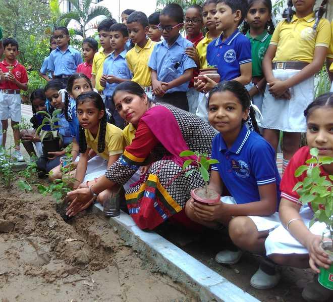 Kids Plant Saplings, Promote Eco Awareness