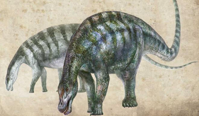 'Amazing Dragon' Fossils Rewrite History
