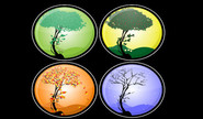 D.Ashrita's Seasons Of Life