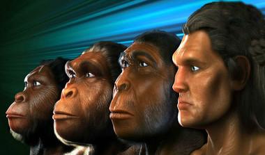 AI Helps Find New Human Ancestor