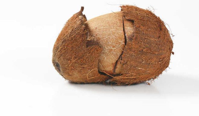 Coconut For Good Health In Winter